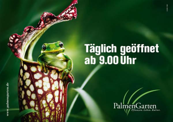 Reiseziel: Palmengarten | Hotel an der Messe | Frankfurts Geheimtipp · Reisende · Urlauber